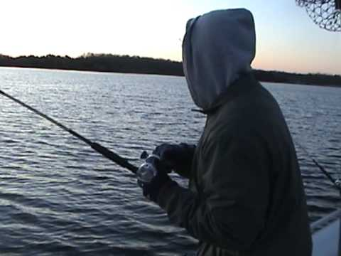 Lake anna virginia striper fishing youtube for Lake anna fishing