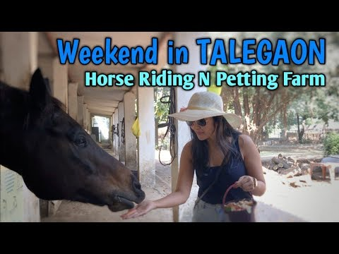 My Weekend in TALEGAON Pet and Horse Farm | Japalouppe Equestrian Centre