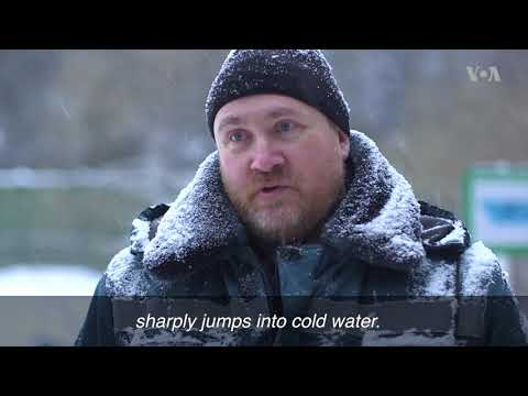 Muscovites Plunge Into Icy Water To Celebrate Epiphany
