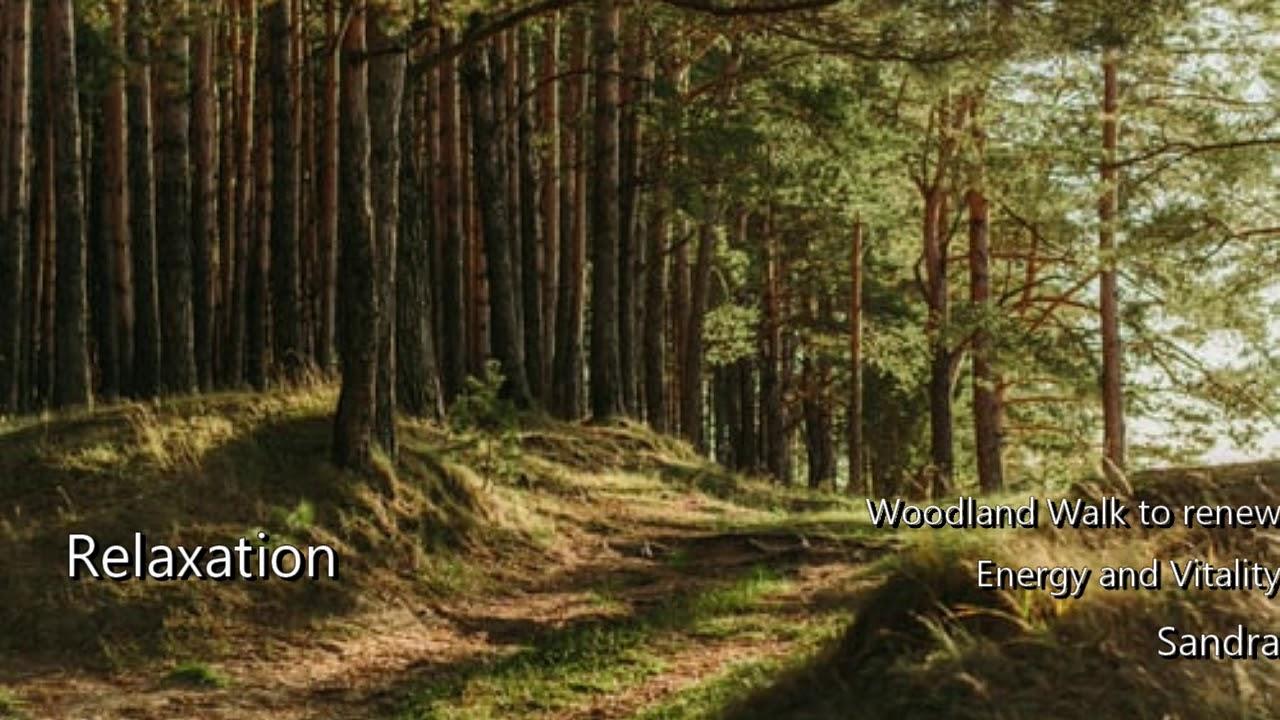 Woodland Walk Relaxation