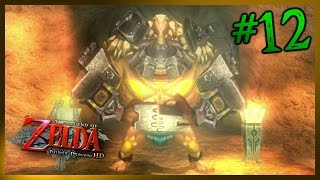 'Magnetic Personality' - Legend of Zelda: Twilight Princess HD [#12]