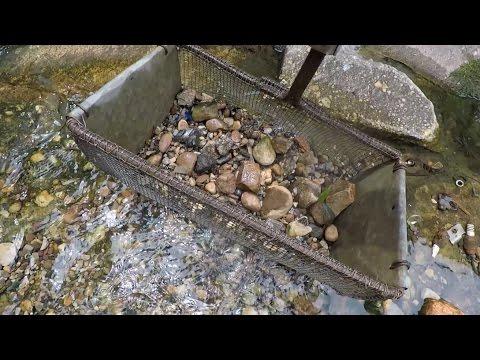 Treasure Hunting City Creek: Old Coins & Nick Nack Patty Wacks