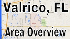Overview of Valrico FL - Lance Mohr - Tampa Realtor
