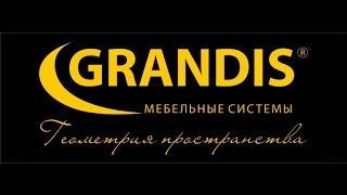 Компания GRANDIS