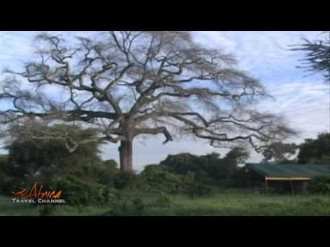 Visit Tanzania & Zanzibar Island - Africa Travel Channel