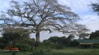 Visit Tanzania & Zanzibar Island – Africa Travel Channel