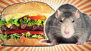 Hamburger Al Topo Simulator - Citizen Burger Disorder