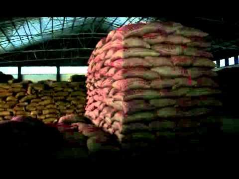 Alfoz Coffee Exporter