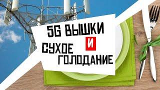 Вышки 5G и сухие голодовки