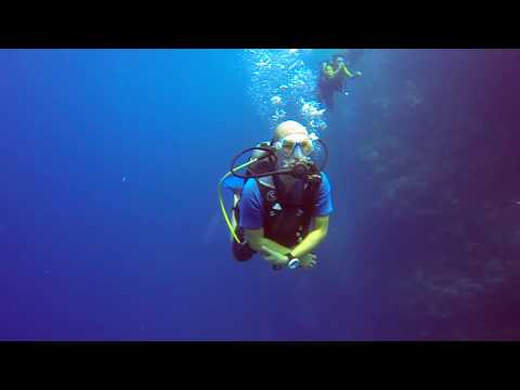 Scuba Diving @ Maldives February 2017 - Filitheyo Island Resort - Wallstreet - Nord Nilandhe Atoll