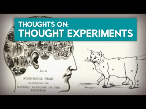 Thoughts about Thought Experiments