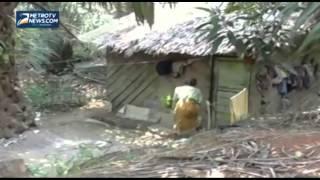 Nenek Miskin Hidup Sebatangkara di Tengah Hutan