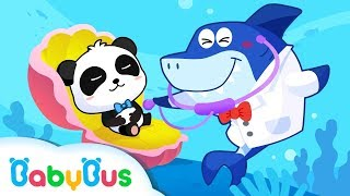 Doctor Shark Check on Baby Panda | Baby Shark, Baby Crocodile | Kids Songs collection | BabyBus