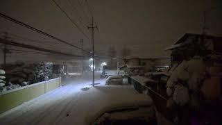 2018/1/22_深々と降ってます。ちょっと吹雪のよう thumbnail
