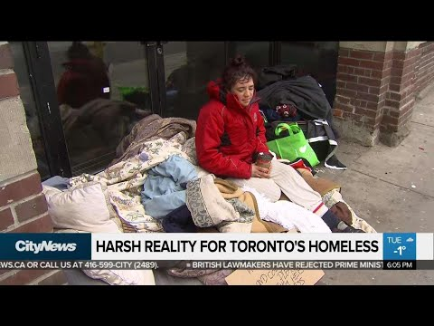 Struggle continues for Toronto's homeless despite more shelter beds