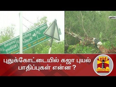 புதுக்கோட்டையில் கஜா புயல் பாதிப்புகள் என்ன? | Cyclone Gaja | Pudukkottai | Detailed Report
