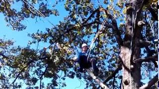 Level II  THE Tree Traverse