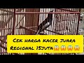 Kacer Juara Regional Di Jual  Mp3 - Mp4 Download