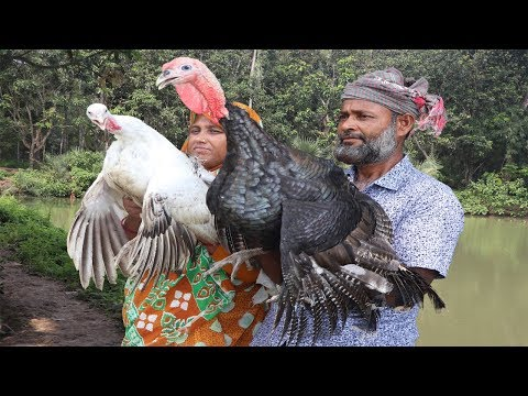 Big Turkey Curry Recipe Village Style Delicious Cooking How To Cook Full Turkey Bird Village Food