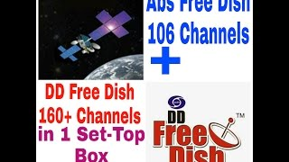 Abs and DD Free Dish in One Set-Top Box Installation | Amazing Easy Process in Hindi