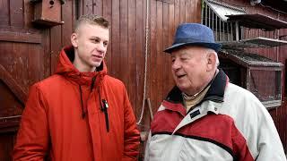 Krystian Kahler - PZHGP 0125 Katowice / Gołębie Rozpłodowe U Mistrza !!!
