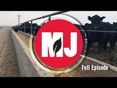 Market Journal - January 12, 2018 (full episode)