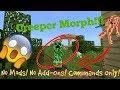 Morph Command! (NO Mods) + Shoutouts!|Minecraft Tutorials