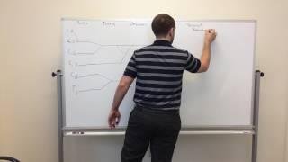 Brachial Plexus for physical therapists part 1