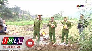 Thời sự Lào Cai tối 17/1/2018 | THLC