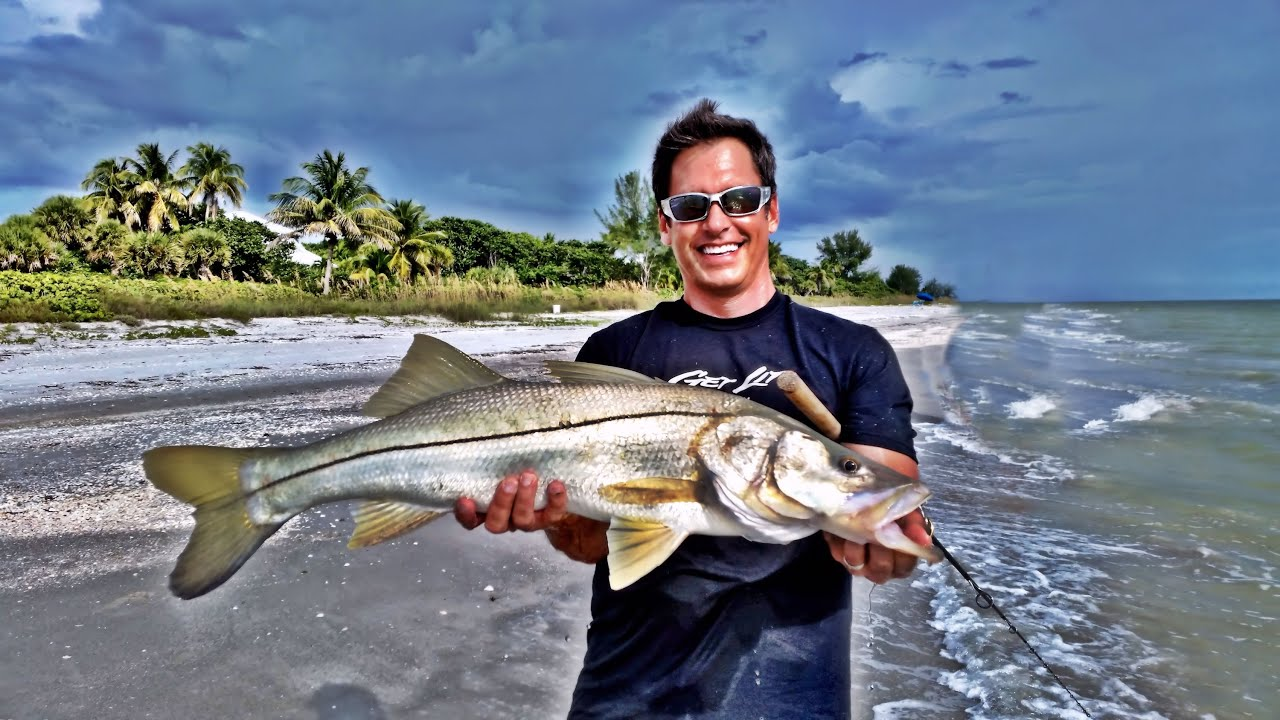 Monster sanibel florida snook from the beach peter for Snook fishing florida
