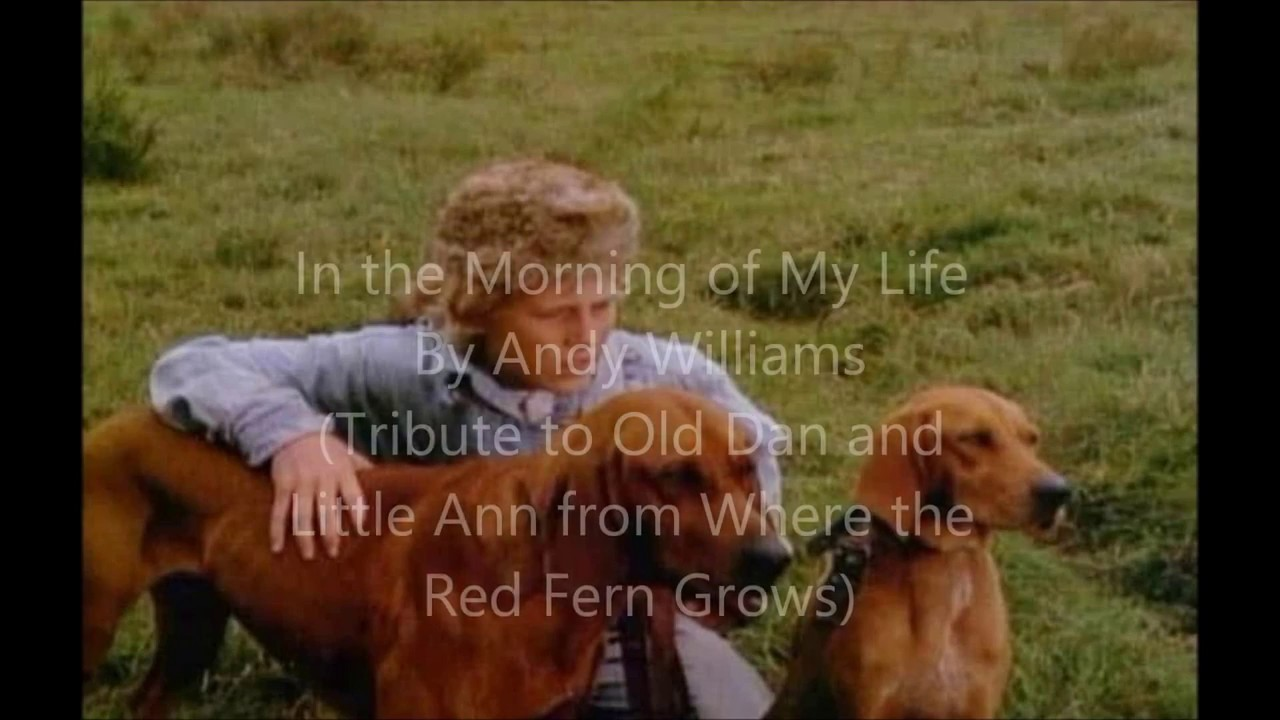 In the Morning of My Life By Andy Williams (Tribute To Old