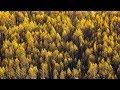 AKI Amano - Streamlines [Silk Music]