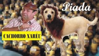 Zé Lezin - O Cachorro Xaréu