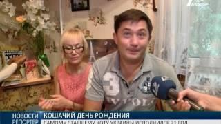 Рекорд: самому старшему коту Украины исполнился 21 год