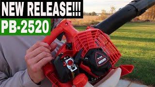 ECHO PB-2520 HANDHELD LEAF BLOWER REVIEW