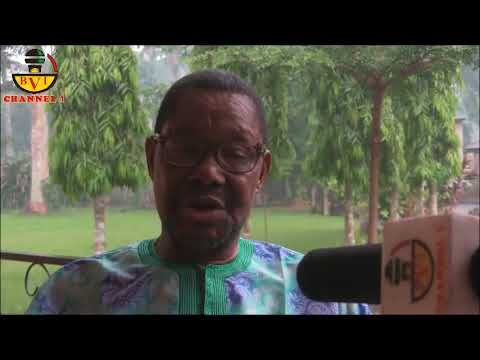 Solution To Igbo Predicament In Nigeria Is Freedom - A.D.F President