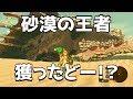 ☆88【ゲルド砂漠で泳げるど】ゼルダの伝説ブレスオブザワイルドを優しく実況プレイ!