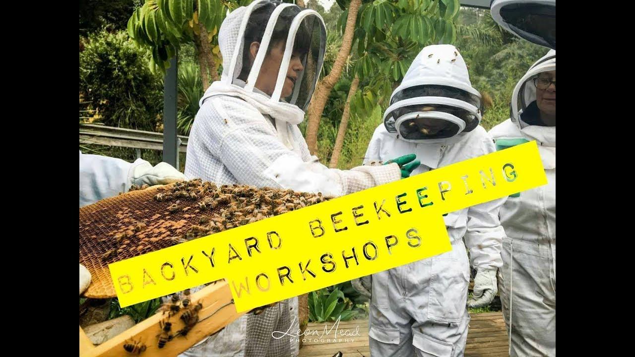 Backyard Beekeeping 5 top Questions AUSTRALIA - YouTube