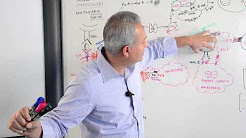 Immunology Lecture 20 (Immune Pharmacology)