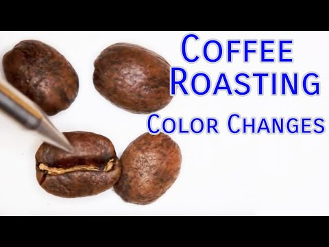Coffee Roasting Basics - Color Changes