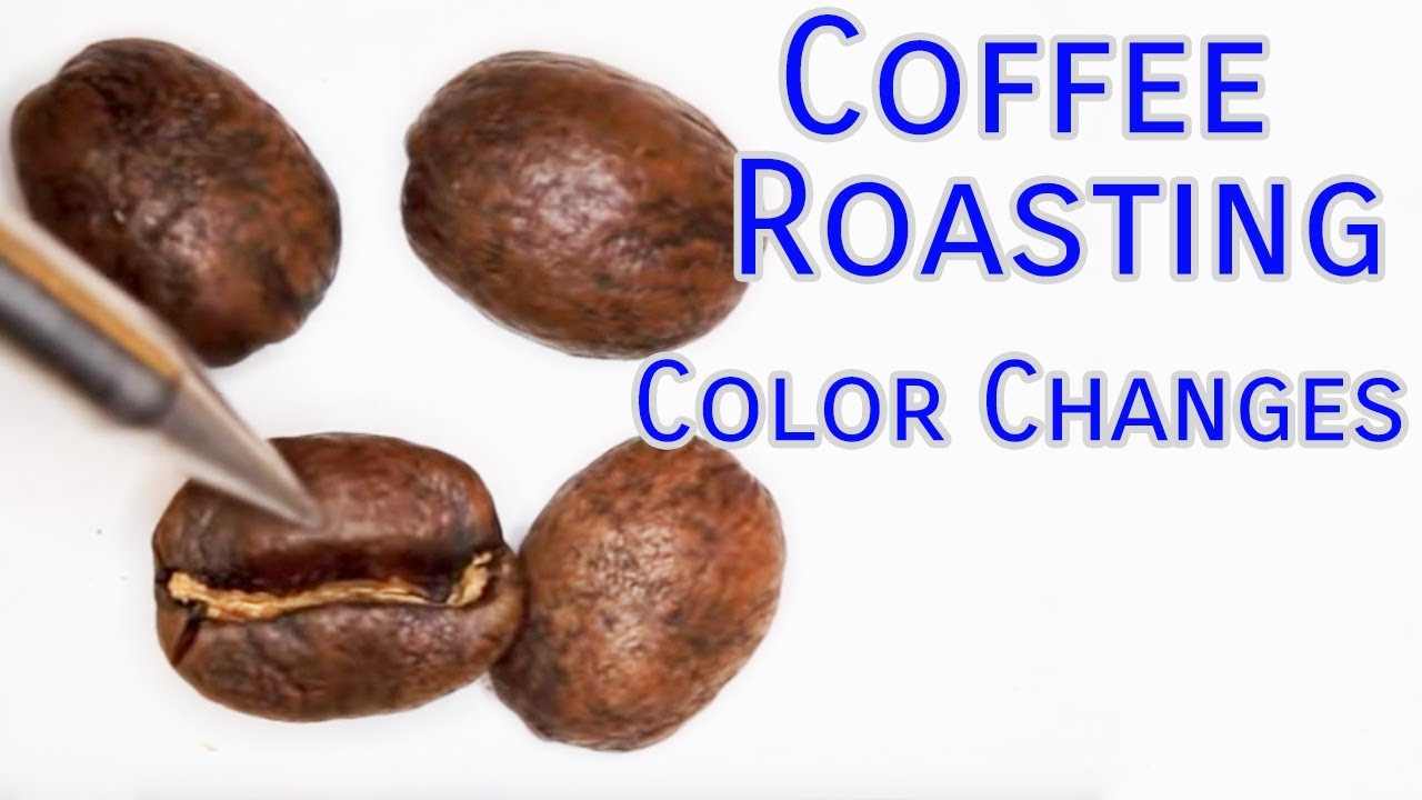 Coffee Roasting Basics Color Changes Youtube