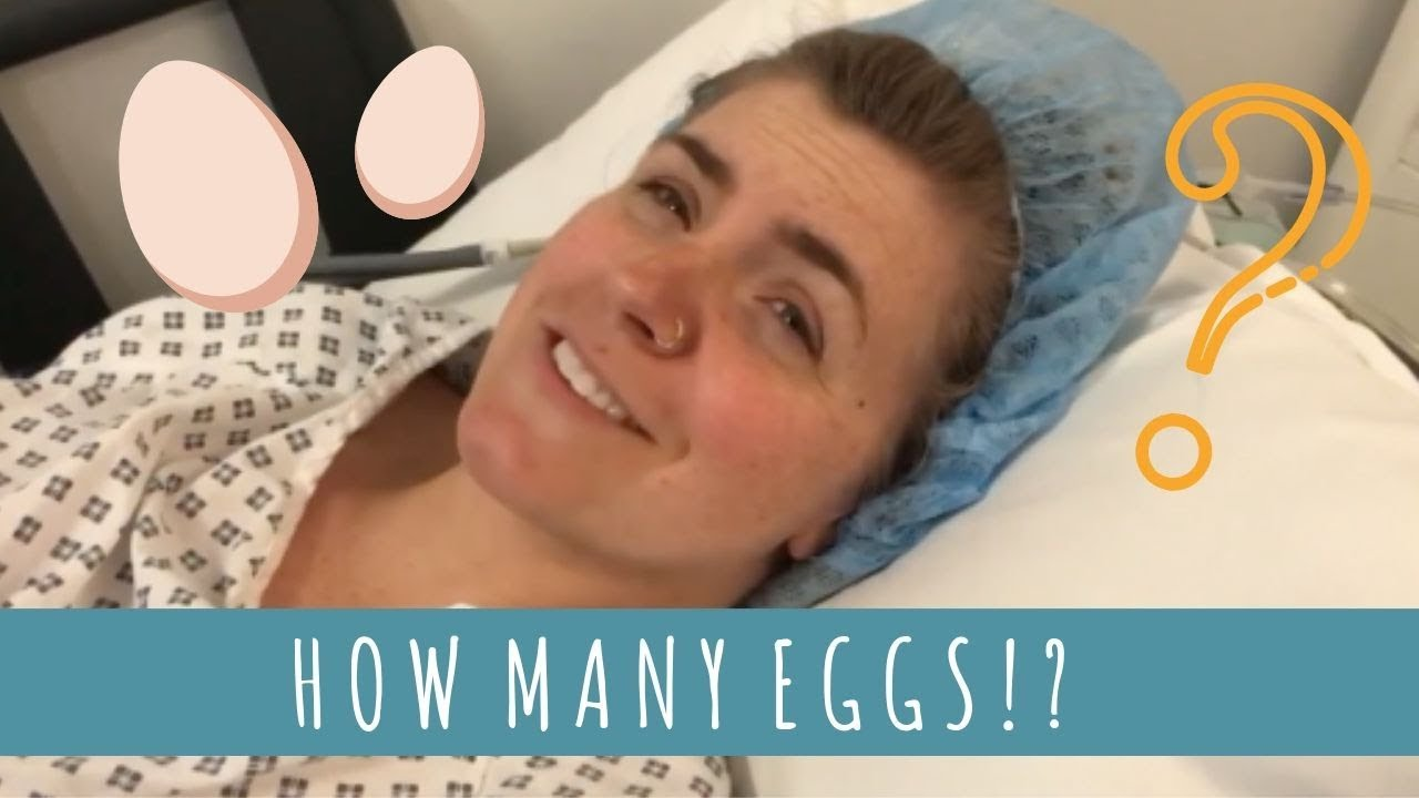 IVF: EGG COLLECTION
