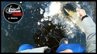 Рыбалка по первому льду 2018. р.Анката