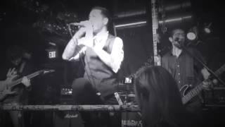 Schadenfreude Live - Six Side Die