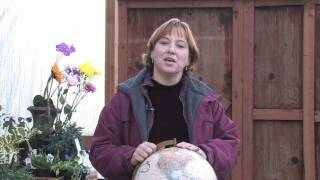 Gardening Tips & Flowers : How to Grow Blanket Flower (Gaillardia Grandiflora)