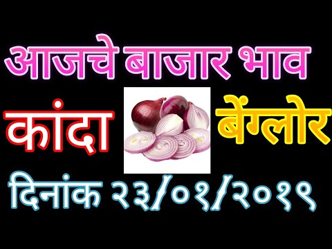 बेंग्लोर येथील कांदा बाजार भाव ### onion price in Benglor## प्याज के दाम