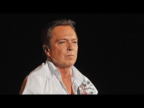 David Cassidy in Critical Condition, Suffers Organ Failure