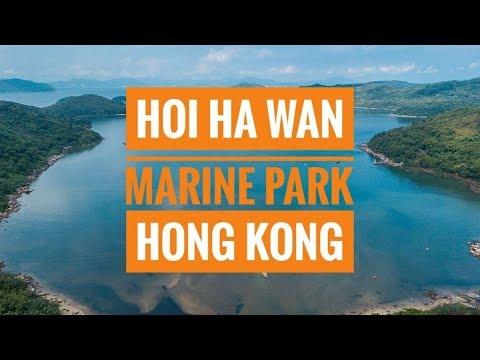 Explore Hoi Ha Wan Marine Park, Hong Kong (4K Drone + GoPro)