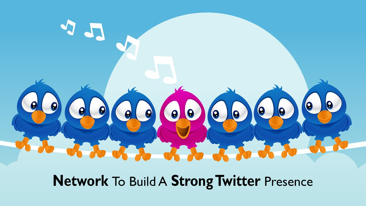 network to grow a strong twitter following youtube