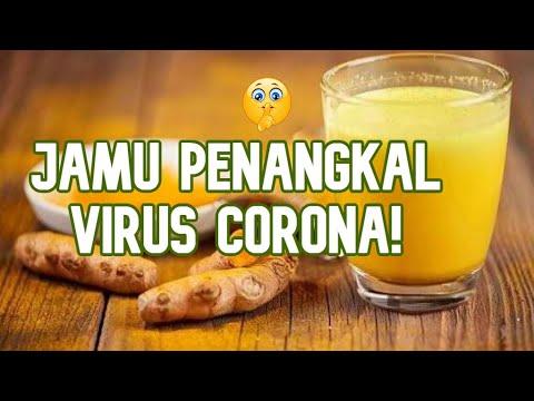 cara-membuat-jamu-penangkal-virus-corona-mudah-dan-enak-banget-di-badan